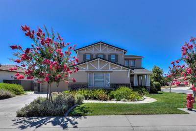 Orangevale Single Family Home For Sale: 9028 Pecor Way