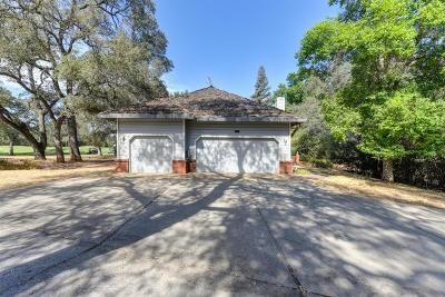 Rancho Murieta Single Family Home For Sale: 6830 Domingo Drive