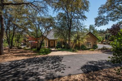Auburn CA Single Family Home For Sale: $875,000