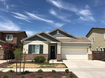 Lathrop Single Family Home For Sale: 936 River Bend Drive