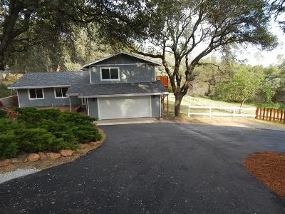 Pilot Hill Single Family Home For Sale: 4193 Oak View Drive