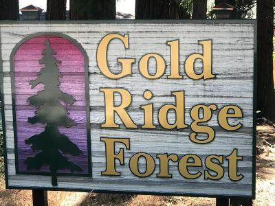 Pollock Pines Residential Lots & Land For Sale: 3309 Hazel Street