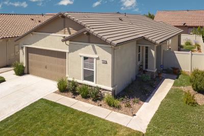 Manteca Single Family Home For Sale: 1346 Chestnut Hill Drive
