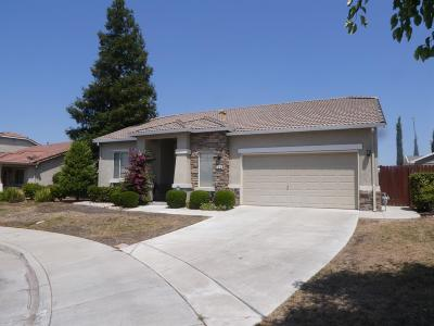 Tracy Single Family Home For Sale: 660 Tracey Jean Court
