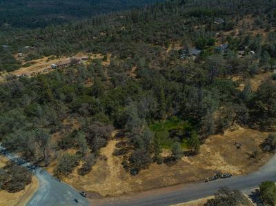 Grass Valley Residential Lots & Land For Sale: 17317 Wolf Mountain