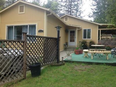 Placerville Single Family Home For Sale: 1070 Goyan Avenue