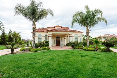French Camp, Lathrop, Manteca, Ripon, Tracy Single Family Home For Sale: 28146 Treehouse Lane