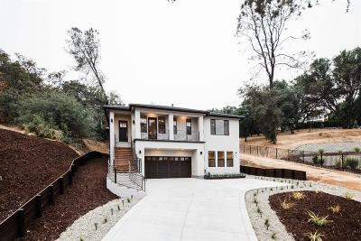 Auburn Single Family Home For Sale: 790 Deerbrooke Trail