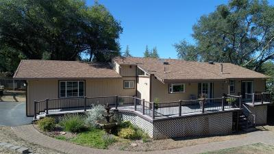 Cameron Park Single Family Home For Sale: 3199 Wilkinson Road