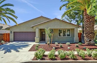Modesto Single Family Home For Sale: 3108 Flushing Meadows Drive