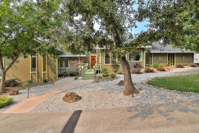 Orangevale Single Family Home For Sale: 9232 Suede Hill Court