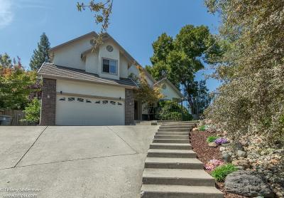 Auburn Single Family Home For Sale: 4065 River Woods Drive