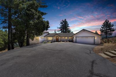 Grass Valley Single Family Home For Sale: 18788 You Bet Road