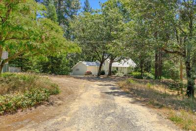 Placerville Single Family Home For Sale: 4452 Washboard Lane