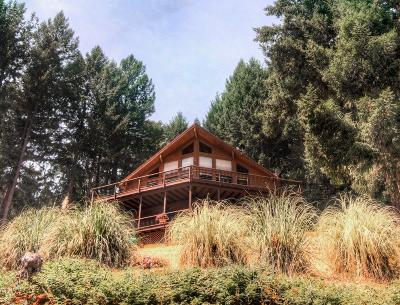 El Dorado County Single Family Home For Sale: 6301 Canyon Creek Road