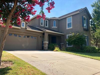 Folsom Single Family Home For Sale: 1629 Crowle Court