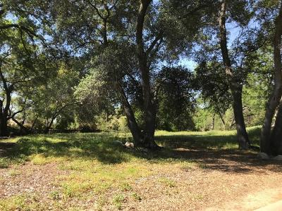 Granite Bay Residential Lots & Land For Sale: 5859 Granite Hills Drive