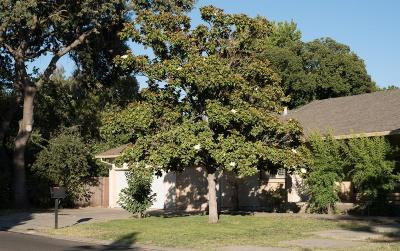 Single Family Home Pending Sale: 2484 Estate Drive