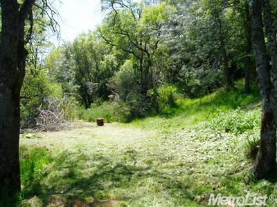 Garden Valley CA Residential Lots & Land For Sale: $32,000