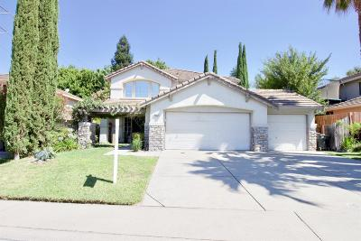 Antelope Single Family Home For Sale: 8863 Palmerson Drive