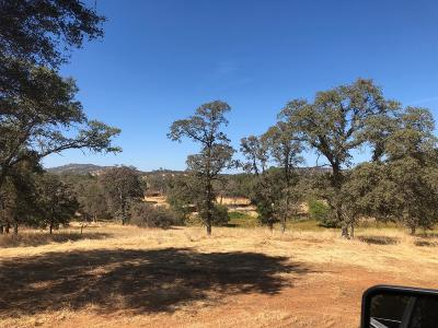 Grass Valley Residential Lots & Land For Sale: 22976 Perimeter