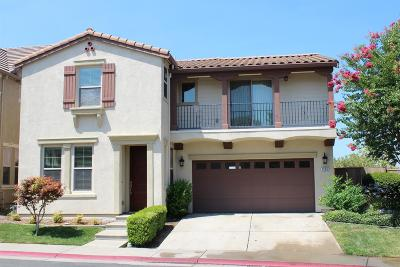Folsom Single Family Home For Sale: 1595 Ballou Circle