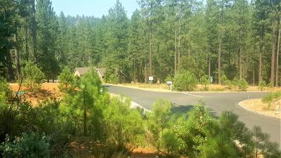 Nevada City Residential Lots & Land For Sale: 10441 Buffington