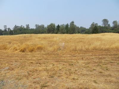 Amador County Residential Lots & Land For Sale: 13477 Heritage Oaks Dr.