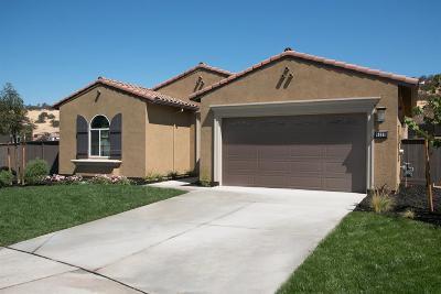 El Dorado Hills Single Family Home For Sale: 5187 Brentford Way