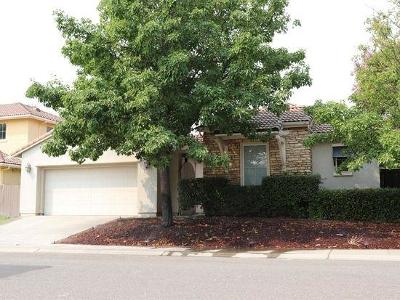 Sacramento Single Family Home For Sale: 5555 Jerry Litell Way