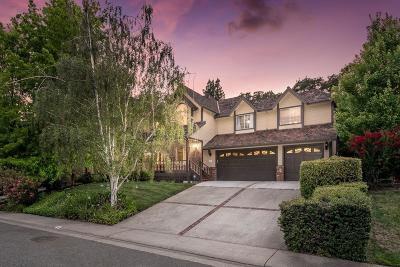 Folsom Single Family Home For Sale: 149 Carmody Circle