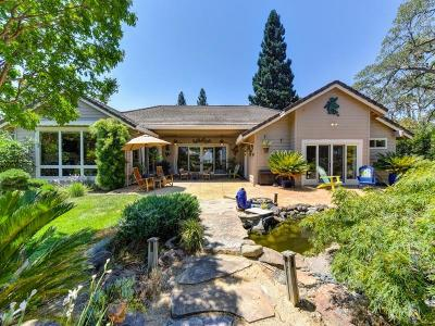 Rancho Murieta Single Family Home For Sale: 6629 Camino Del Lago