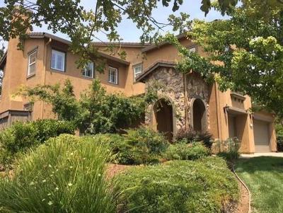 El Dorado Hills Single Family Home For Sale: 8144 Damico Drive