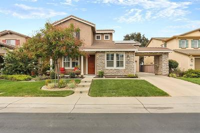 Rocklin Single Family Home For Sale: 2051 Camp Whitney Circle