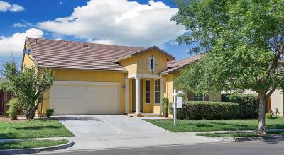 Patterson Single Family Home For Sale: 1469 Cliff Swallow Drive