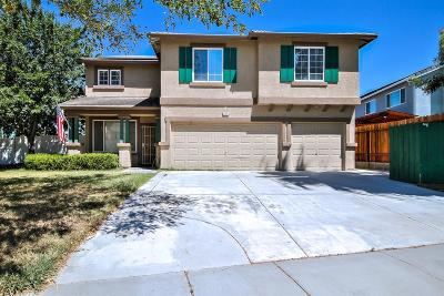 Tracy Single Family Home For Sale: 1711 Treehaven Lane
