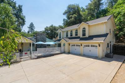 Fiddletown CA Single Family Home For Sale: $569,990
