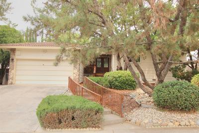 Fair Oaks Single Family Home For Sale: 7829 Tamara Drive