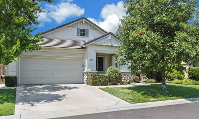 Single Family Home For Sale: 6515 Pine Meadow Circle