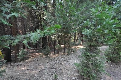 Pollock Pines Residential Lots & Land For Sale: 5662 Daisy Circle