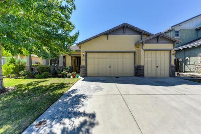 Roseville Single Family Home For Sale: 729 Coibion Court