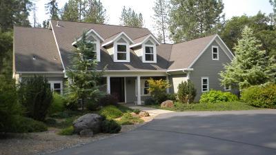 Meadow Vista Single Family Home For Sale: 1429 Walgra Meadows Road