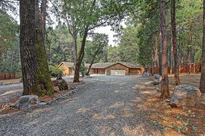 Foresthill Single Family Home For Sale: 4986 Red Ridge Road