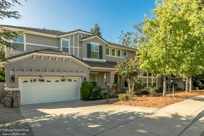 Placer County Single Family Home For Sale: 11004 Blue Wing Place