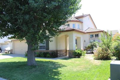 Manteca Single Family Home For Sale: 1968 Solothurn Way