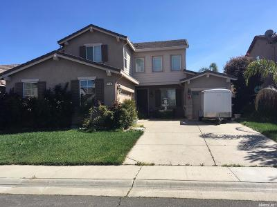 Elk Grove Single Family Home For Sale: 10125 Arches Way