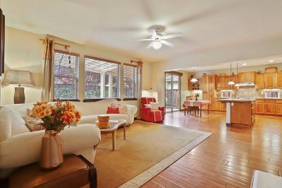 Elk Grove Single Family Home For Sale: 10308 Stathos Drive
