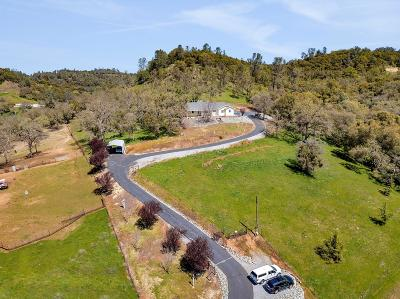 Mokelumne Hill Single Family Home For Sale: 5072 Lombardi Drive