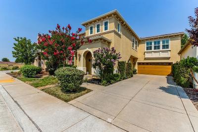 Rancho Cordova Single Family Home For Sale: 3981 Aristotle Circle