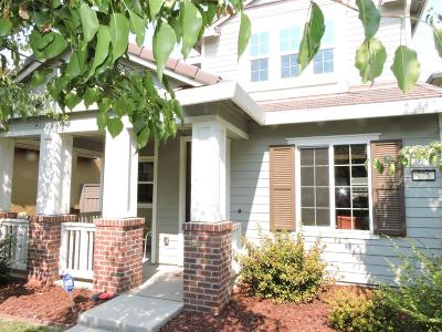 Mountain House Single Family Home For Sale: 725 North Claret Lane